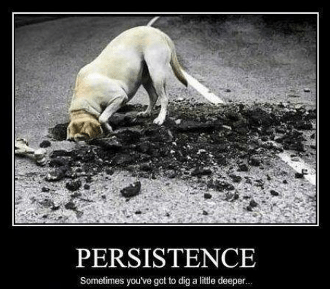 persistence-sometimes-youve-got-to-dig-a-little-deeper-14071571